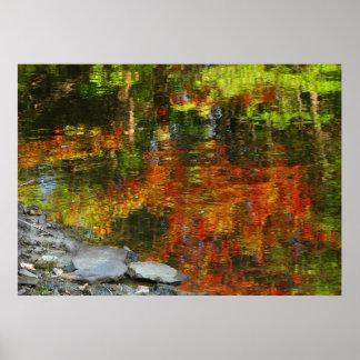 Rocas y poster de las reflexiones del otoño