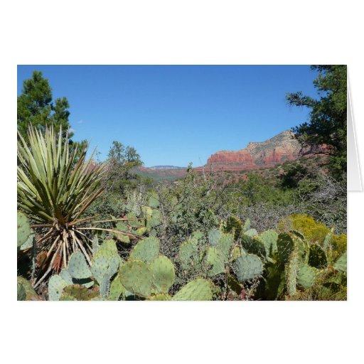 Rocas y tarjeta rojas de los cactus (espacio en bl