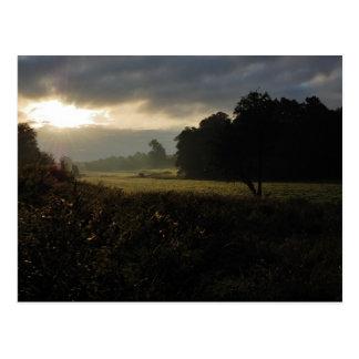 Roche Valley Sunrise Postcard