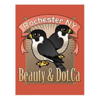 Rochester Beauty & Dot.Ca Postcard