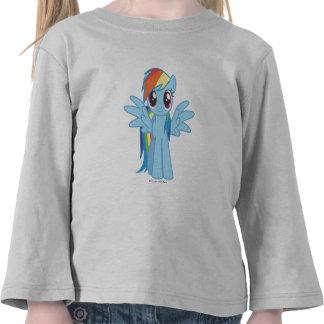 Rociada del arco iris camisetas