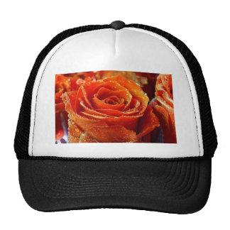 Rocío anaranjado besado gorras de camionero