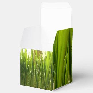 Rocío de la mañana cajas para regalos de boda