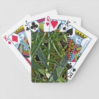 Rocío de la mañana en la hierba barajas de cartas