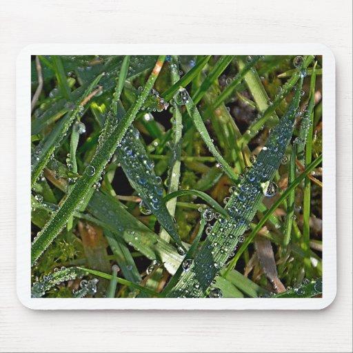 Rocío de la mañana en la hierba tapete de ratón
