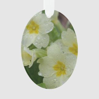 Rocío en la primavera blanca y amarilla
