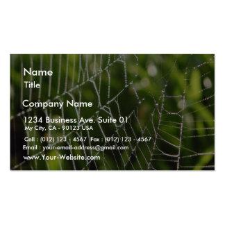 Rocío y Spiderwebs Tarjetas De Visita