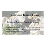 Rock abstract with green plant painterly business cards
