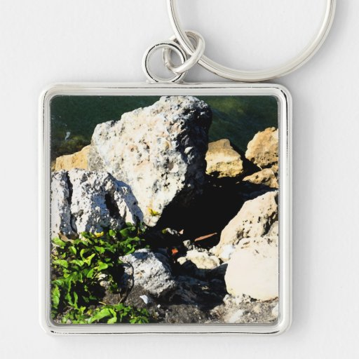 Rock abstract with green plant painterly keychains