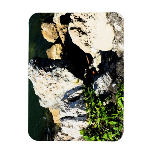 Rock abstract with green plant painterly rectangular photo magnet