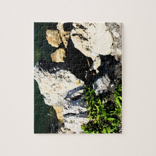 Rock abstract with green plant painterly jigsaw puzzles