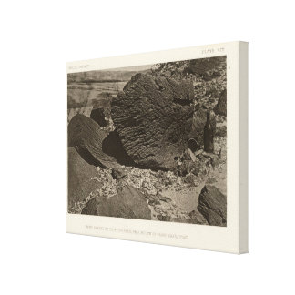Rock carved by drifting sand, Grand Wash, Utah Canvas Print