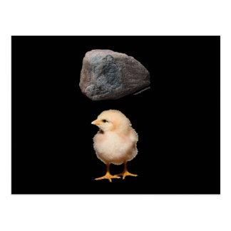 Rock + Chick Postcards