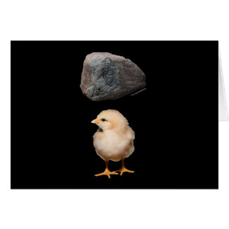 Rock + Chick Stationery Note Card