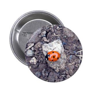 Rock Climber Ladybug Button