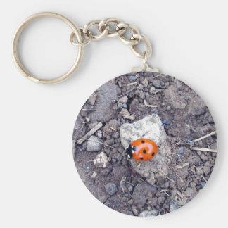 Rock Climber Ladybug Key Chain