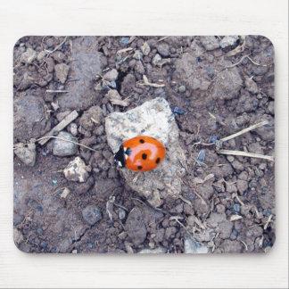 Rock Climber Ladybug Mousepad