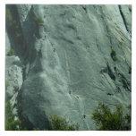 Rock Climbers on El Capitan Tile