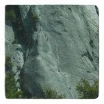 Rock Climbers on El Capitan Trivet
