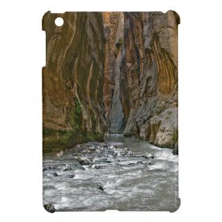 Rock Crazy Canyon iPad Mini Cases