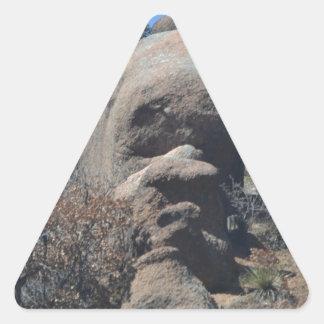 Rock Face Triangle Sticker