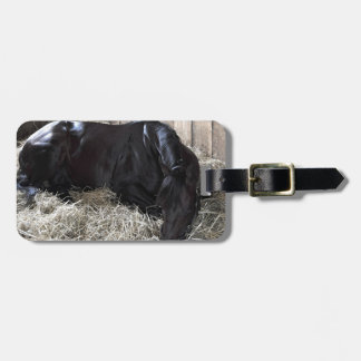 Rock Fall by Speightstown - Renda Luggage Tag