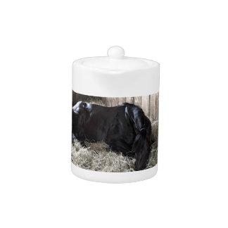 Rock Fall by Speightstown - Renda Teapot