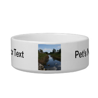 Rock Fence Water House Florida Picture Pet Bowls