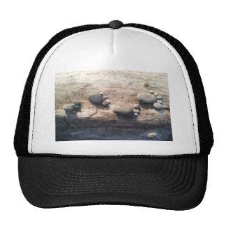 Rock Footprints Trucker Hat