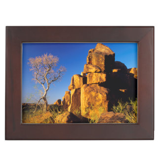 Rock Formation And Tree, Giant's Playground Memory Box