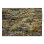 Rock from Joshua Tree Brown Grey Natural Abstract Card