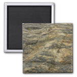 Rock from Joshua Tree Brown Grey Natural Abstract Magnet
