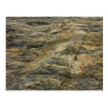 Rock from Joshua Tree Brown Grey Natural Abstract Postcard