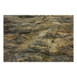 Rock from Joshua Tree Brown Grey Natural Abstract Poster