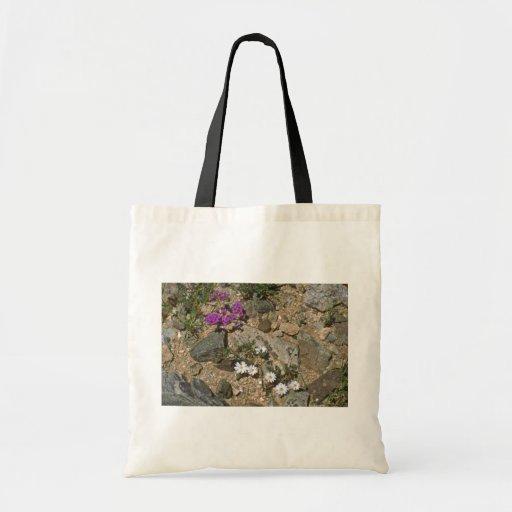 Rock Hard Plants Bags