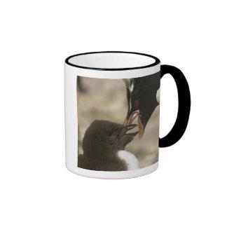 Rock-hopper Penguin, Eudyptes chrysocome, Mugs