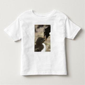 Rock-hopper Penguin, Eudyptes chrysocome, T Shirt