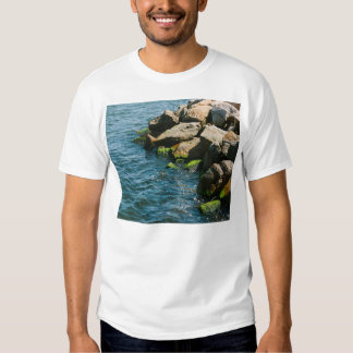 Rock In A Blue Sea, Landscape Photography T Shirt