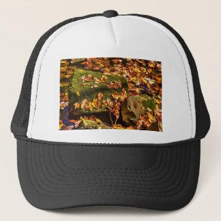 Rock in a Stream Trucker Hat