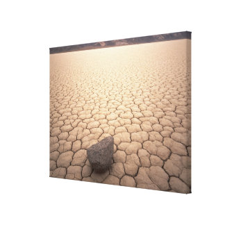 Rock in Dry Cracked Desert Landscape Canvas Print