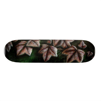 Rock Ivy Skate Board Decks