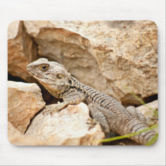 Rock Lizard Mouse Pad