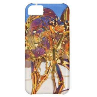 Rock Lobster iPhone 5C Case