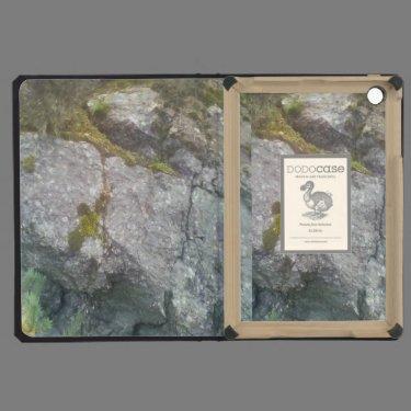 Rock Mountain iPad Mini Cover