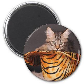 Rock n' Roll Kitty Magnet