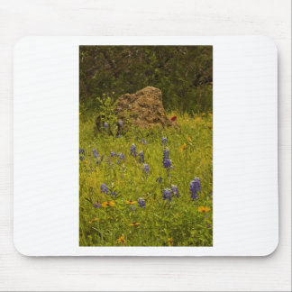 Rock of Ages.JPG Mouse Pad