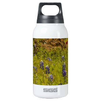 Rock of Ages.JPG 10 Oz Insulated SIGG Thermos Water Bottle