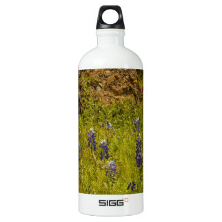 Rock of Ages.JPG SIGG Traveler 1.0L Water Bottle
