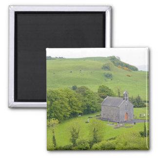Rock of Dunamase, Ireland. Views of and around Magnet