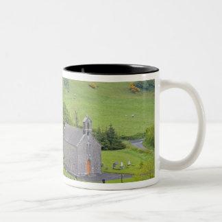 Rock of Dunamase, Ireland. Views of and around Mug